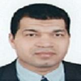 Ahmed M.S. Hegazy