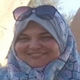 Nashwa Fathy Gamal El-Tahawy
